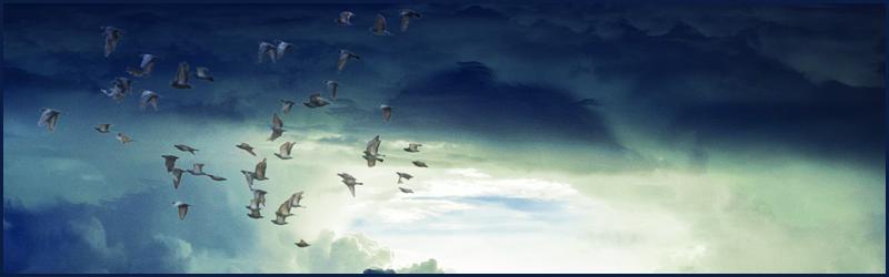 Spirituele gidsen innerlijke verrijking misleiding