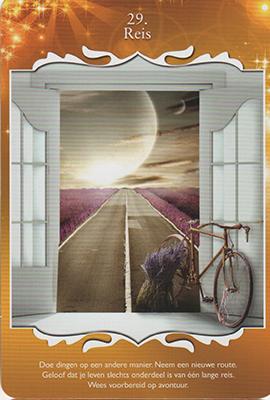 Card 1 - Reis