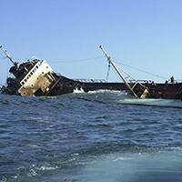 zinked schip voorspelling 2020