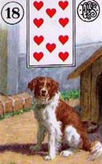 lenormand kaart de hond
